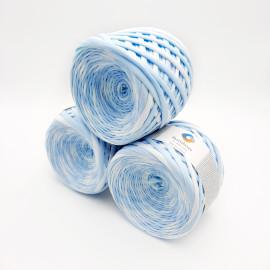 Light blue-white segment